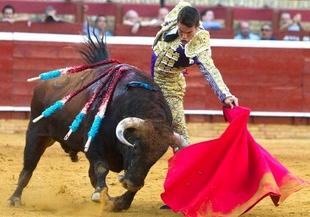 Una conferencia en Don Benito tratar� los ''da�os f�sicos'' de los animales implicados en eventos taurinos