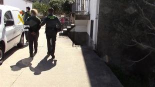 Detenidos siete miembros de un grupo criminal dedicado a robos en el norte de la provincia de C�ceres