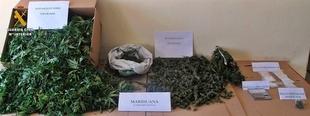 Un detenido en Castuera por supuestos cultivo, tr�fico de drogas y defraudaci�n el�ctrica