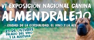 Perros procedentes de toda Espa�a compiten en la VI Exposici�n Nacional Canina este domingo en Almendralejo
