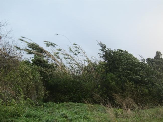 Garganta la Olla (Cáceres) alcanza este lunes la segunda mayor racha de viento en España, con 119 kilómetros por hora