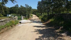 Finalizan las obras de restauración hidrológico-forestal en cauces o zonas de influencia de la provincia pacense
