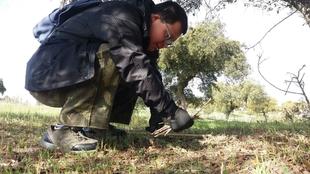 Usuarios del centro ocupacional Luis Zambrano de Badajoz realizan acciones de educación ambiental en la finca La Cocosa