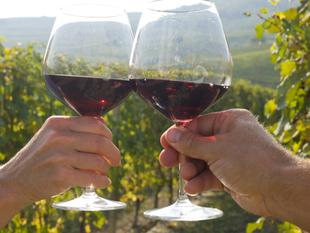 La Ruta del Vino Ribera del Guadiana incrementa sus visitantes un 16,45%