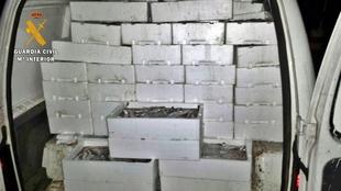 Intervenidos en Almendralejo 500 kilos de pescado en una furgoneta sin ''mínimas condiciones'' de conservación