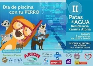 Los perros podrán ir a la piscina en Mérida en la segunda edición de Patas al Agua