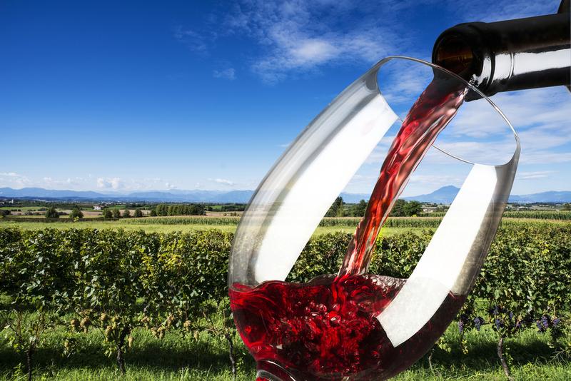 Alumnos del Centro de Formación del Medio Rural de Villafranca completan su formación vitivinícola en Portugal