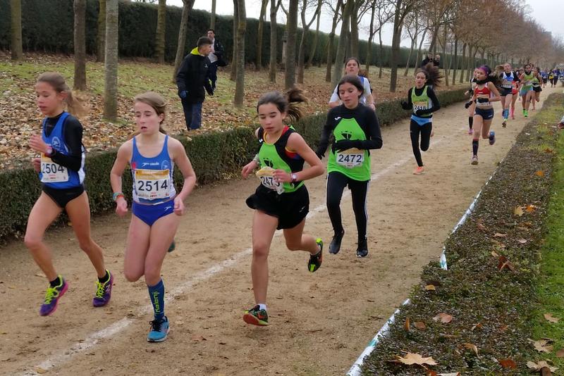 La Diputación viaja al prestigioso Cross de la Constitución de Aranda de Duero con 41 atletas de la región