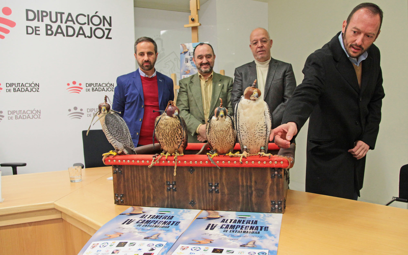 Llerena celebra este fin de semana el IV Campeonato de Altanería con los mejores cetreros del país
