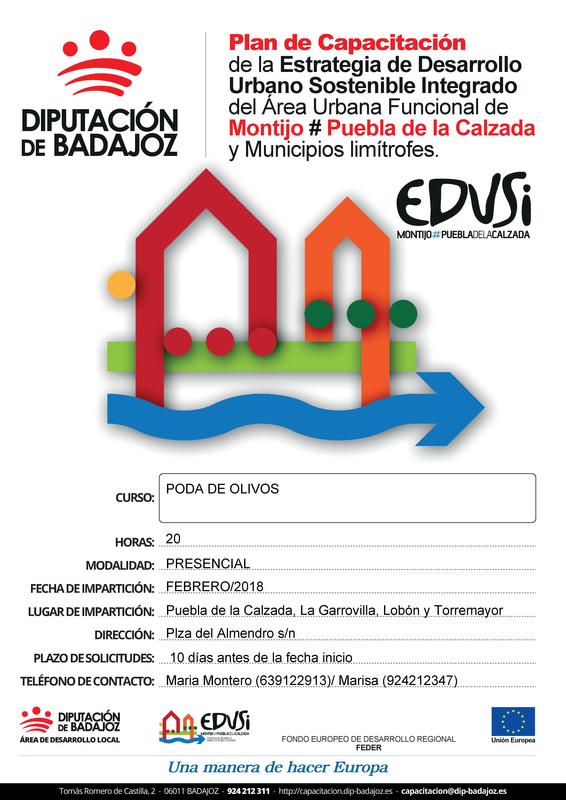 El CID Vegas Bajas organiza un curso sobre poda de olivos