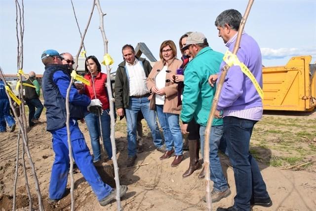 El vivero de la Diputación de Cáceres realiza un reparto equitativo de árboles ante el gran número de solicitudes