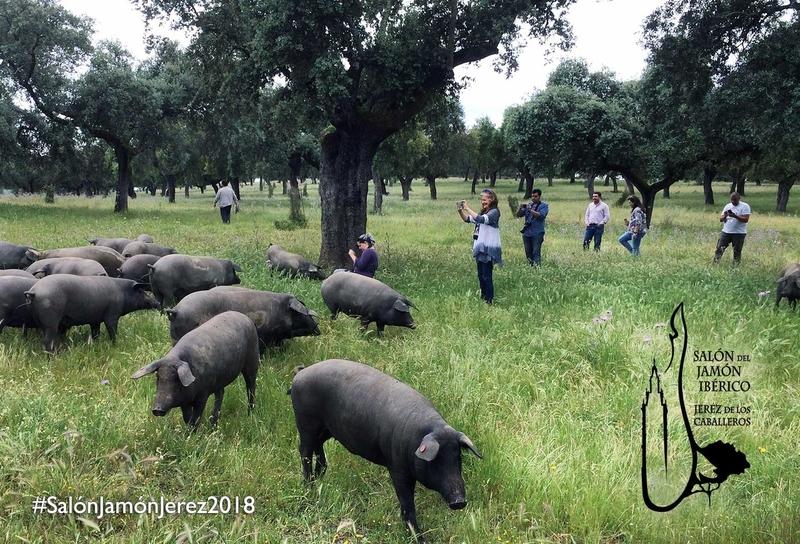 Blogueros y periodistas especializados promocionarán el XXIX Salón del Jamón Ibérico de Jerez de los Caballeros