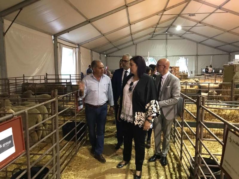 Arranca la VIII Feria Ganadera y Agroturística de La Siberia