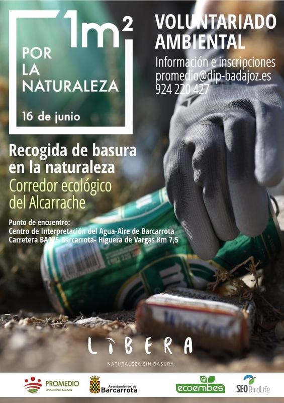 """Promedio organiza una recogida de """"basuraleza"""" en el Corredor Ecológico del Alcarrache"""