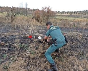 La Guardia Civil esclarece un incendio forestal de 335 ha que afectó a tres municipios pacenses