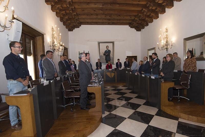 50 mil euros para acciones de apoyo al Pacto Social, Político por el Ferrocarril y apoyar la manifestación del 18N