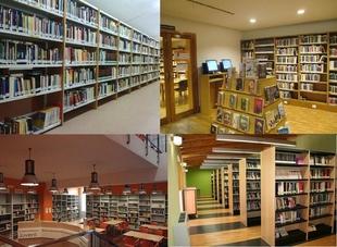 Dotación de fondos bibliográficos y audiovisuales a entidades locales de la provincia