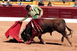 Triunfo de Carlos Domínguez en la Feria del Toro de Olivenza