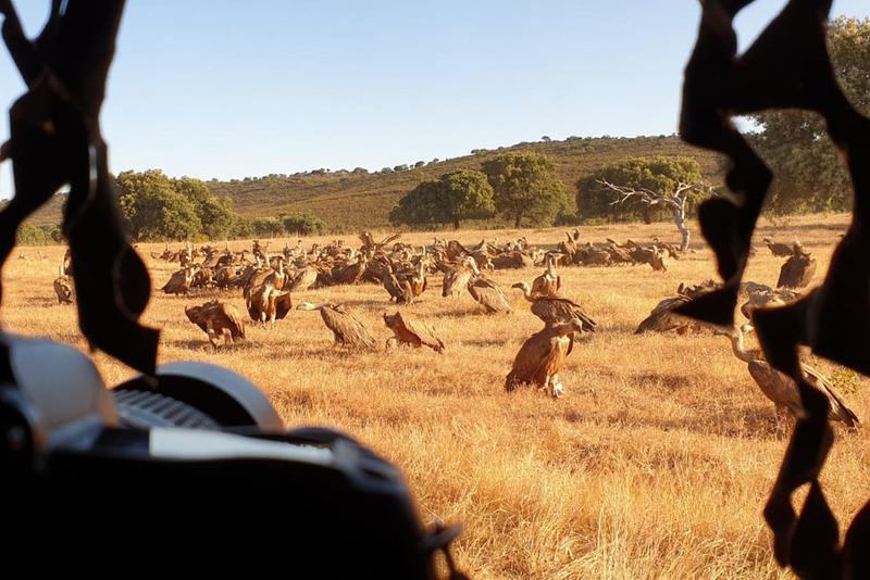 Ocho blogueros y fotógrafos especializados recorren y conocen el Tajo/Tejo Internacional