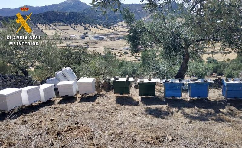 La Guardia Civil detiene a los presuntos autores de la sustracción de 70 colmenas en Capilla y Zarza Capilla
