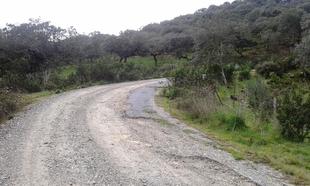 Jerez de los Caballeros pone en marcha un Programa Municipal para el arreglo de caminos rurales
