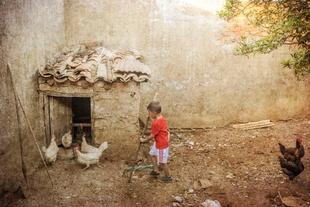 'A salvo del guarduño', de Felicidad Naveira, de Pozuelo de Zarzón, Primer Premio Fotográfico 'Señas de identidad'