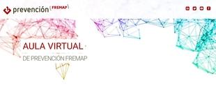 FREMAP ofrece a los trabajadores de la Diputación una sesión online sobre bienestar psicoexcepcional