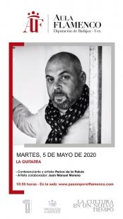 La guitarra, protagonista de la 2ª conferencia online del Aula de Flamenco de la Diputación