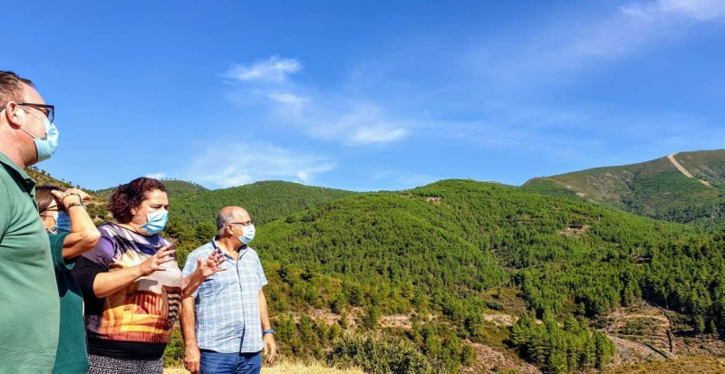 La Junta de Extremadura ya tiene avanzado el plan de restauración forestal para la zona afectada por el incendio en La Vera y El Jerte