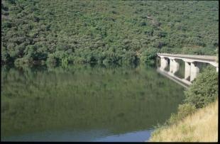 La Junta publica la convocatoria de ayudas destinadas a los municipios del área de influencia del Parque Nacional de Monfragüe por más de 465.000 euro