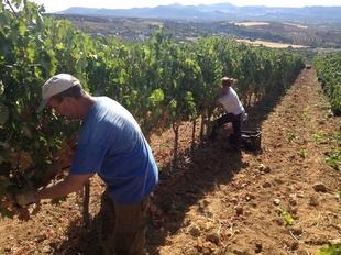 Extremadura es la comunidad con menor movilidad geogr�fica de parados
