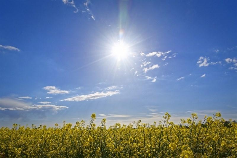 La alerta naranja por altas temperaturas se ampl�a hoy martes a las Vegas del Guadiana, Barros y Serena, y Tajo y Alag�n