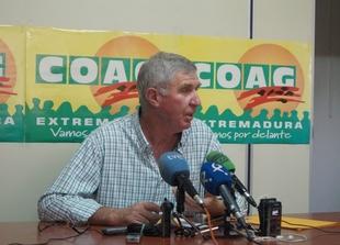 COAG prev� un aumento del 3,5% en la producci�n vitivin�cola en Extremadura