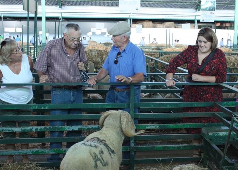 El PSOE destaca las medidas de la Junta para que se recupere la renta de los ganaderos extreme�os