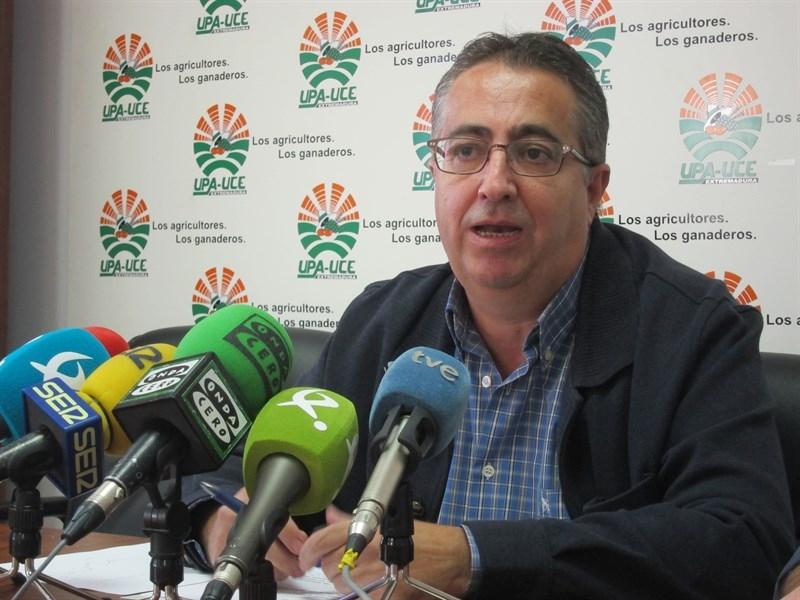 UPA-UCE Extremadura cifra en 32 millones las p�rdidas del sector del ma�z por la bajada de producci�n y de precios