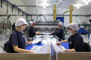 Extremadura registra el mayor crecimiento de producción industrial del país en octubre, con un 8,3%