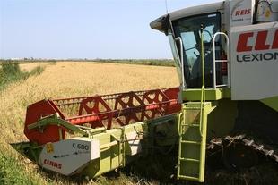 Junta de Extremadura y Feader destinan 20 millones de euros en ayudas para primera instalación de jóvenes agricultores