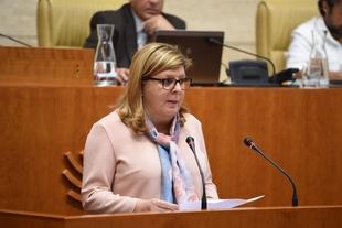 La Asamblea insta a la Junta a reforzar su apoyo y acompañamiento a los emprendedores con discapacidad de Extremadura