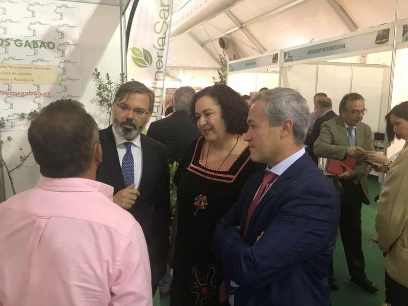 Extremadura 2030 incluye una estrategia para mejorar la competitividad del sector forestal