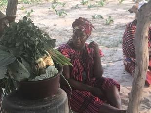 El norte de Namibia recibe la ayuda humanitaria de la Agencia Extremeña de Cooperación Internacional