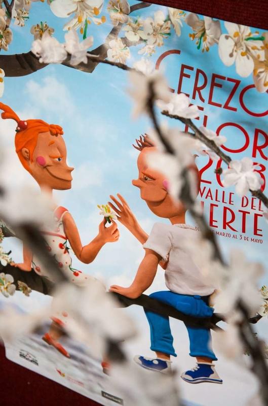 Vara apuesta por traer turistas extranjeros al Cerezo en flor