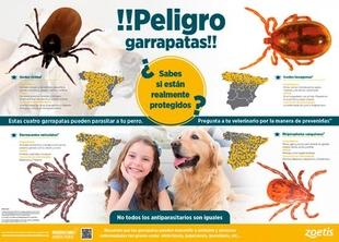 Se inicia la campaña anual de prevención contra las garrapatas