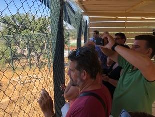 El Centro 'Los Hornos' de Sierra de Fuentes estrena la adecuación que permite visitar a los linces acogidos en las instalaciones