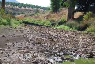 Denuncian que la Confederación Hidrográfica del Guadiana vuelve a no respetar el caudal ecológico del río Matachel
