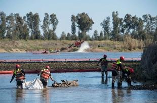 Vara valora el trabajo desarrollado por la UME, el Ejército de Tierra y la CHG para erradicar el camalote del río Guadiana