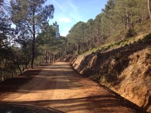 La Junta de Extremadura ha licitado más de 33 millones de euros del Plan de Caminos Rurales