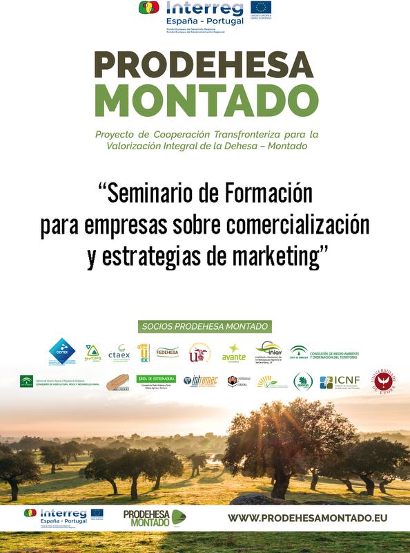 Extremadura Avante organiza tres seminarios de comercialización y estrategias de marketing para aumentar la competitividad de las empresas