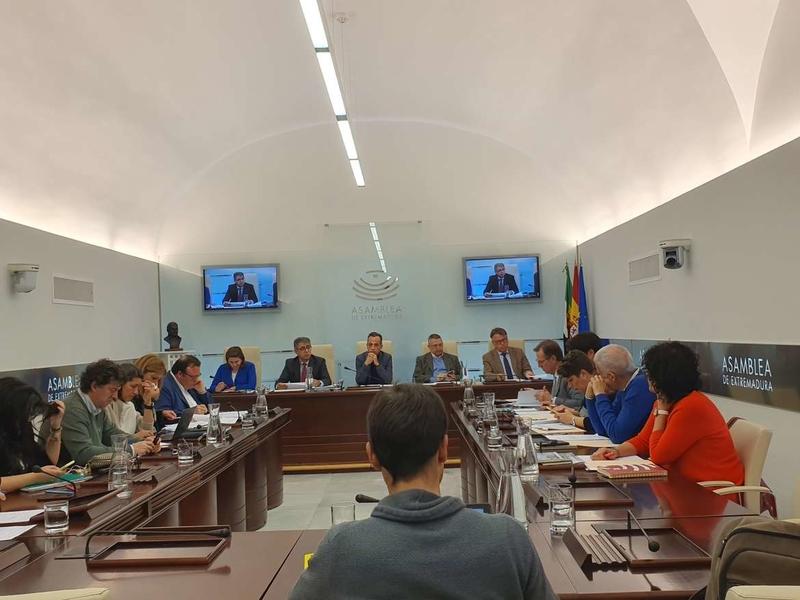 La Junta de Extremadura apuesta por un nuevo 'Plan Integral para el Comercio de Proximidad'