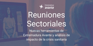 Extremadura Avante refuerza la competitividad empresarial con reuniones sectoriales