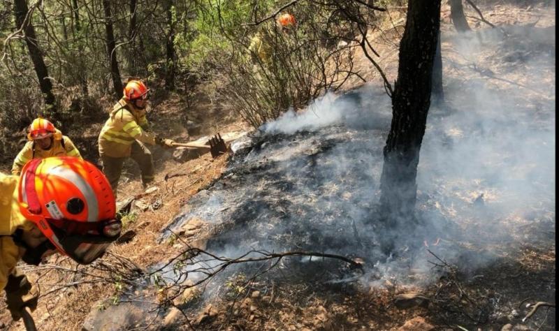 El fuego arrasa 700 hectáreas en 23 incendios forestales durante la pasada semana